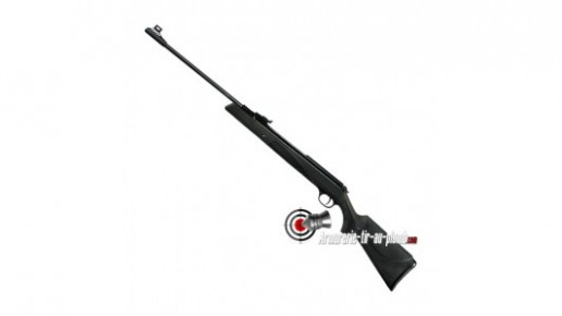 Diana Panther 31 T06 Carabine a Plomb