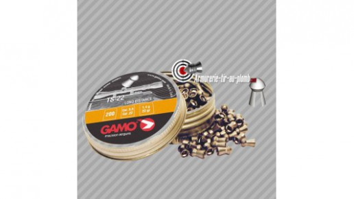 Plombs Gamo TS-22 long distance - 5.5 mm