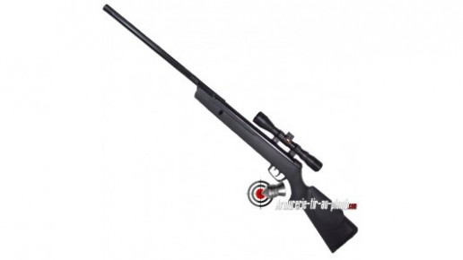Gamo Big Cat 1200 avec lunette 4x32