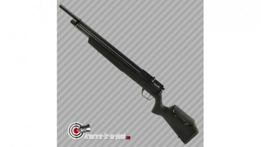 Benjamin Marauder Carabine PCP