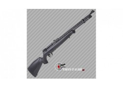 Crosman Benjamin Maximus PCP 20 joules - calibre 4.5mm
