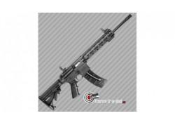 Carabine 22LR S&W M&P15