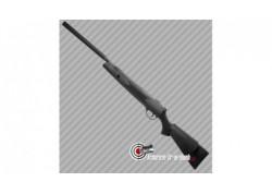 Carabine à plombs Webley VMX Quantum 20 joules