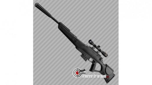 Beeman Quiet Tek Carabine a Plomb Avec Lunette 4x32