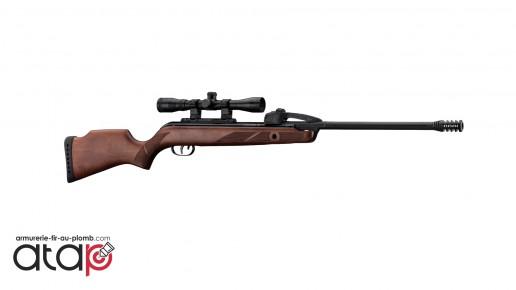 Carabine à plombs Gamo Fasto Shot 10 IGT cal.4.5, 20 joules
