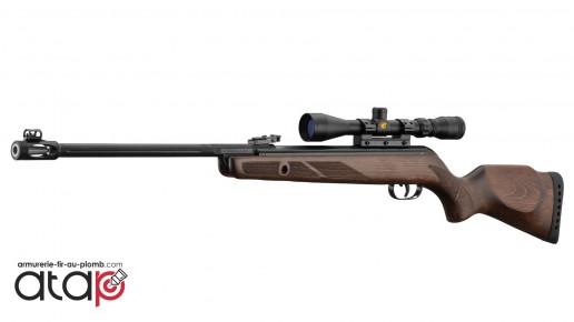 Gamo Hunter 440 AS Avec Lunette 3-9x40 Carabine a Plomb