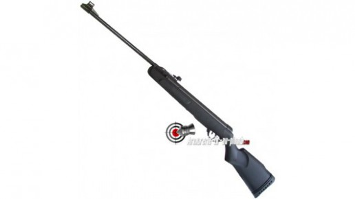 Gamo Big Cat - 10 J