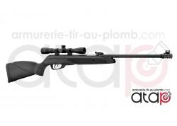 Carabine À Plomb Gamo Black Bear Avec Lunette 4x32